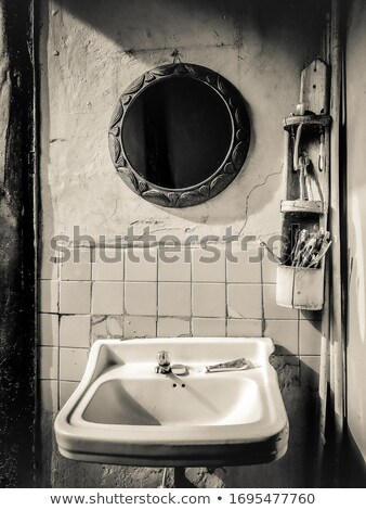 Washed whole plumbs in bowl  Stock photo © dash
