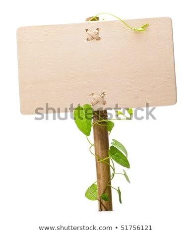 Bahçe örnek çim arka plan imzalamak Stok fotoğraf © colematt