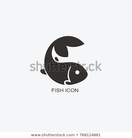 красочный · аквариум · рыбы · ярко · природы · синий - Сток-фото © blaskorizov