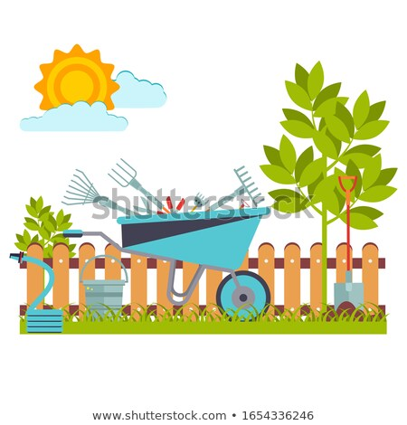 Vegetable Garden Plot Flat Illustration Stock photo © lenm