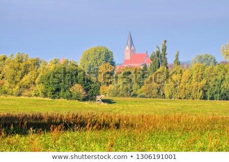 старый · город · Церкви · Skyline · кирпичных · Готский · Cityscape - Сток-фото © lianem