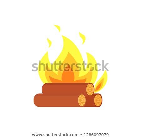 ホット · 燃えるような · にログイン · 火災 · 実例 - ストックフォト © robuart