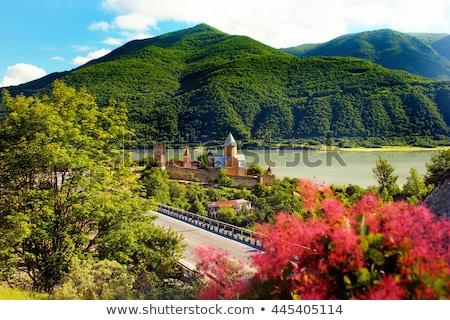 Château complexe rivière Géorgie vue mur Photo stock © boggy