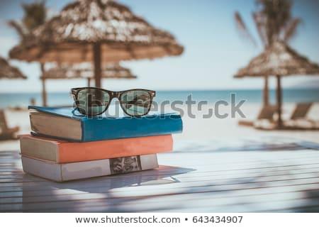 nyár · évszak · trópusi · édenkert · pálmalevelek · égbolt - stock fotó © sarts