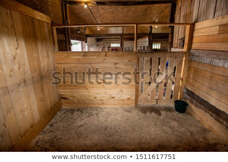 One of empty barns for racehorse surrounded by wooden walls and door Stock photo © pressmaster