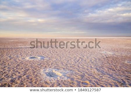 Güzellik gün batımı tuzlu göl kadın demiryolu Stok fotoğraf © olira
