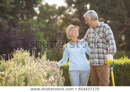 kert · kalap · virágok · kesztyű · kertészkedés · szék - stock fotó © elenaphoto