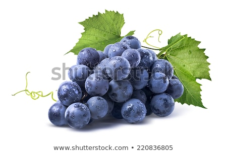 Stock photo: composition  of images of grapes and vines