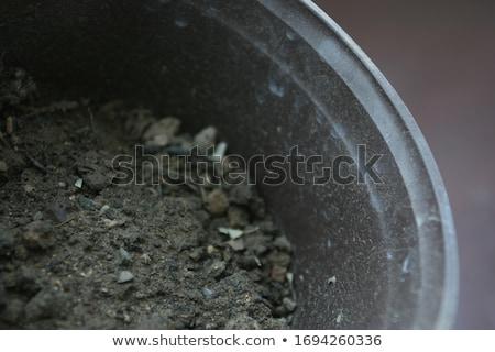 old pots stock photo © hjpix
