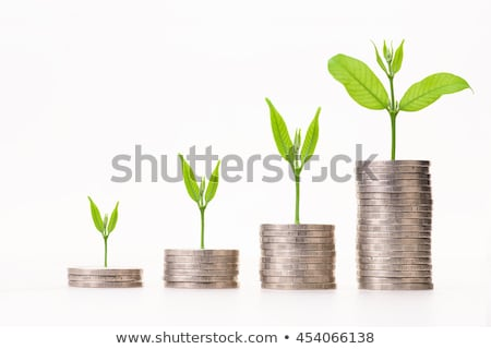golden grow isolated Stock photo © marinini