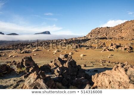 Minas de San Jose in Teide National Park stock photo © lunamarina