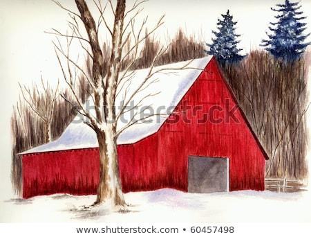 nieve · pino · rojo · granero · detrás · árbol - foto stock © DonLand