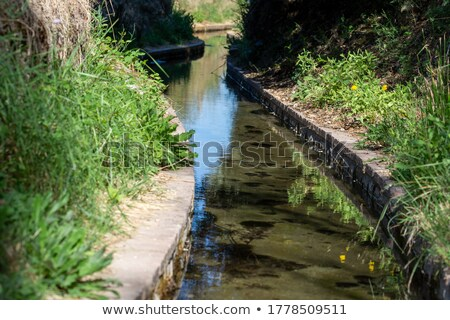 Ditch, arabic water channel for agriculture, Spain Stock photo © lunamarina