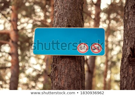 blue traffic sign with copy space in the green forest stock photo © lunamarina