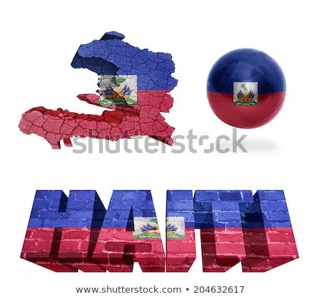 3D personnage pavillon Haïti isolé Photo stock © Kirill_M