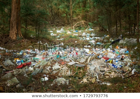 Rubbish in the forest Stock photo © artlens
