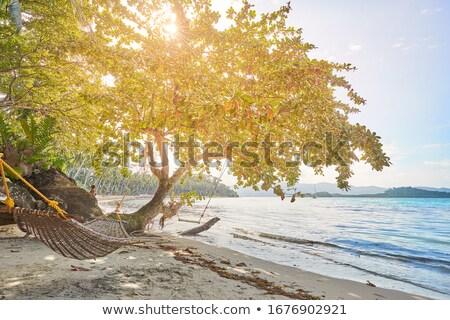 Tropikalnej plaży wygaśnięcia wody chmury charakter morza Zdjęcia stock © smithore