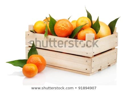 érett · gyümölcs · narancs · fehér - stock fotó © natika