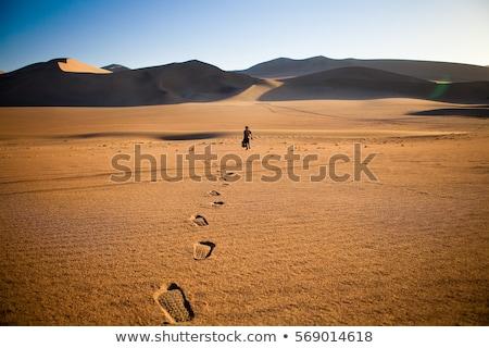 human footsteps in sand in desert stock photo © mikko