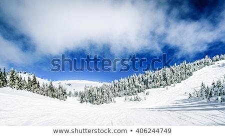 Winter alpine berg scène blauwe hemel sneeuw Stockfoto © chrisga