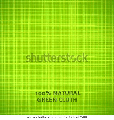 Groene abstract grid patroon doek Stockfoto © MiroNovak