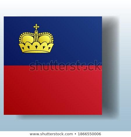Pulsante simbolo Liechtenstein bandiera mappa bianco Foto d'archivio © mayboro1964
