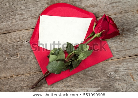 Love letter and rose stock photo © nessokv
