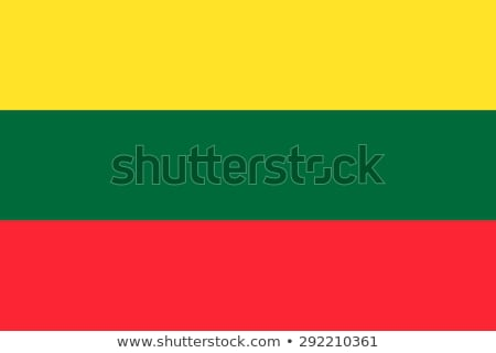 флаг Литва ручной работы квадратный форма аннотация Сток-фото © k49red