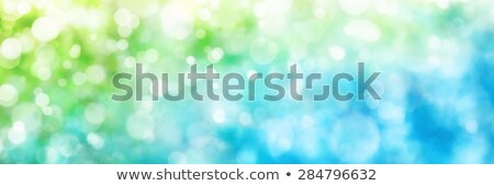 Defocused highlights in green and blue, panorama format Stock photo © Smileus