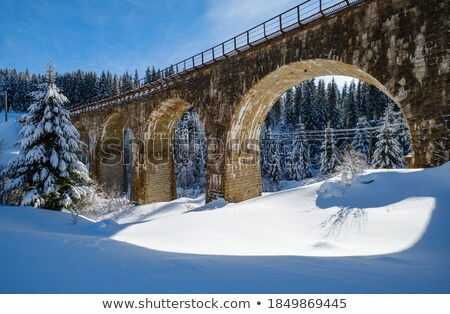 bridge viaduct in the Carpathians Stock photo © OleksandrO