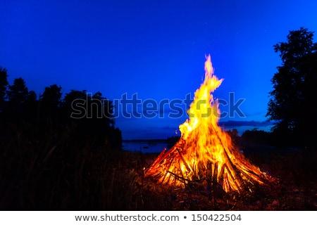 şenlik ateşi erkek orman iki kızlar izlerken Stok fotoğraf © FOTOYOU