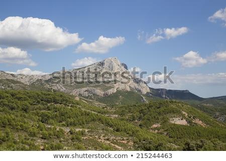 Mont Sainte Victoire in Provence, France Stock photo © lightpoet