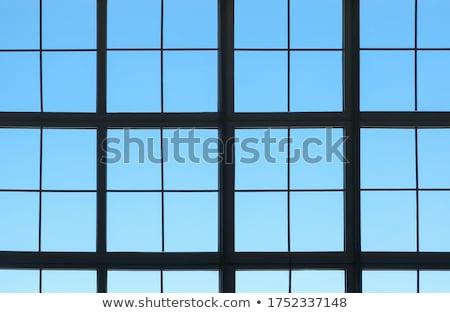 Beautiful colorful grid Stock photo © IMaster