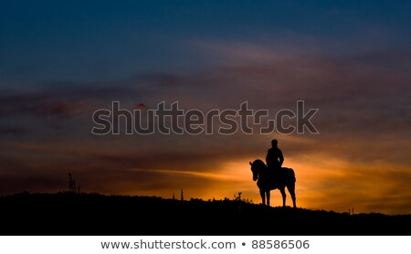 Photo stock: Homme · cheval · silhouette · coucher · du · soleil · illustration