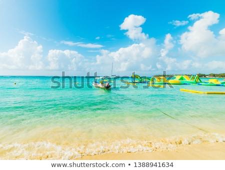 scenic tropical beach at Sainte Anne Stock photo © meinzahn