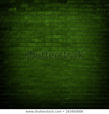 Weathered green brick wall Stock photo © stevanovicigor