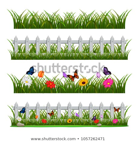 Scene with wooden fence at daytime Stock photo © bluering