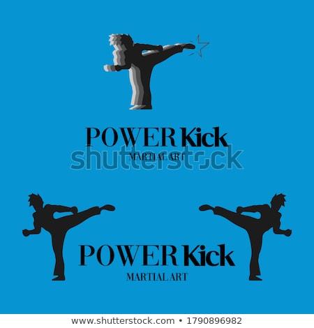 テコンドー · シルエット · スポーツ · 活動 · 良い - ストックフォト © comicvector703