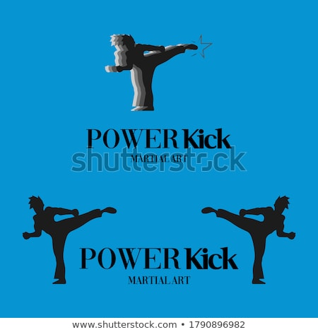 Taekwondo martial art silhouette Stock photo © comicvector703