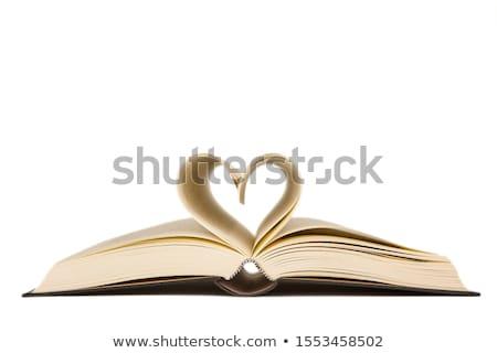 Kinyitott könyv szív alak oldalak forma szív Stock fotó © carenas1
