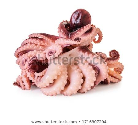 nyers · polip · főzés · kő · asztal · tengeri · hal - stock fotó © fisher