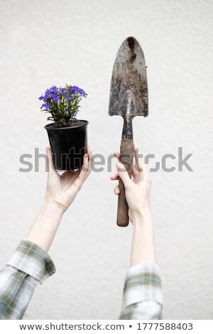 Kobieta interesu łopata kobieta portret Zdjęcia stock © IS2