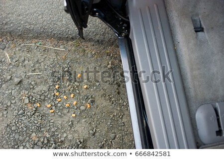 Breakfast cereal on floor by car Stock photo © IS2