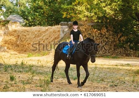 boy riding a horse stock photo © bluering