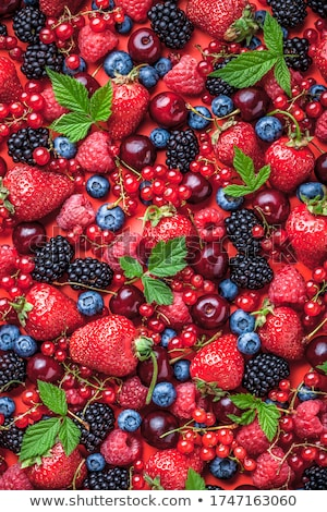 Shiny pile of fresh blackberry Stock photo © dash