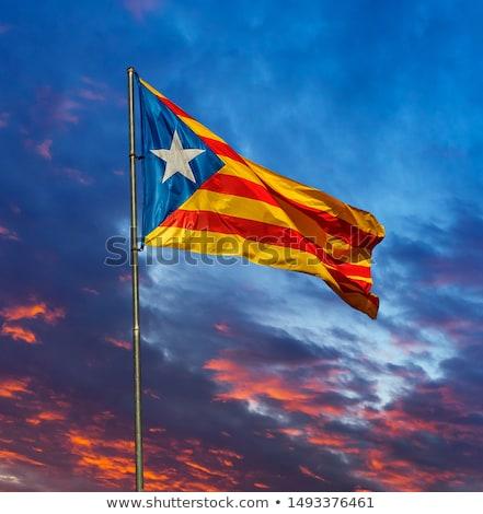 フラグ スペイン国旗 スペイン 壊れた 素朴な 木製 ストックフォト © nito
