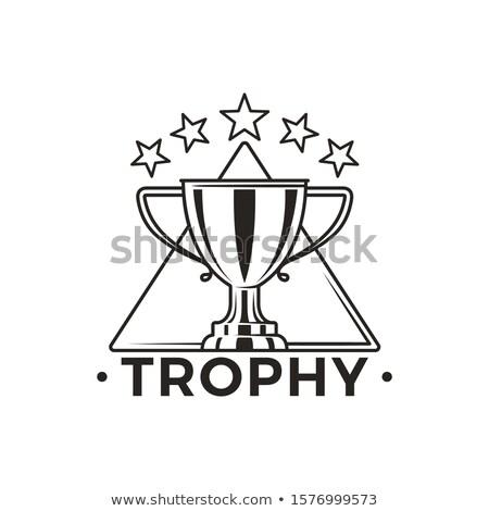 campeón · dorado · trofeo · taza · brillante · adjudicación - foto stock © robuart