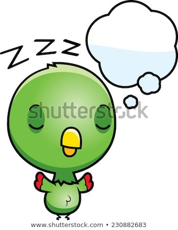 Rajz baba papagáj álmodik illusztráció zöld Stock fotó © cthoman