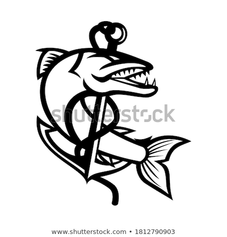 Barracuda and Anchor Mascot Stock photo © patrimonio