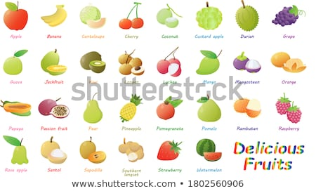 Chompoo and Coconut Durian Pineapple Set Vector Stock photo © robuart